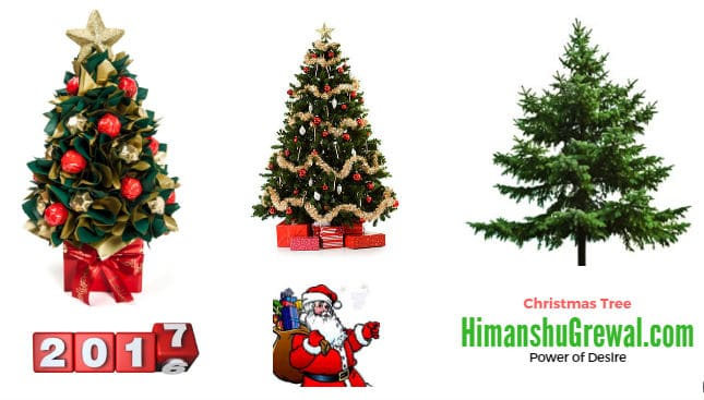 2017 Christmas Tree images free download